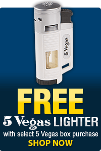 5 Vegas Lighter FREEBIE
